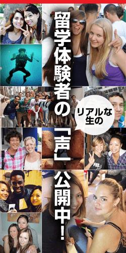 留学体験者の声